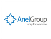 Anel Group